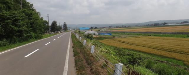 ジョギングダイエット 風景
