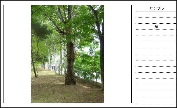 エクセル写真帳ver5.0 縦撮り写真