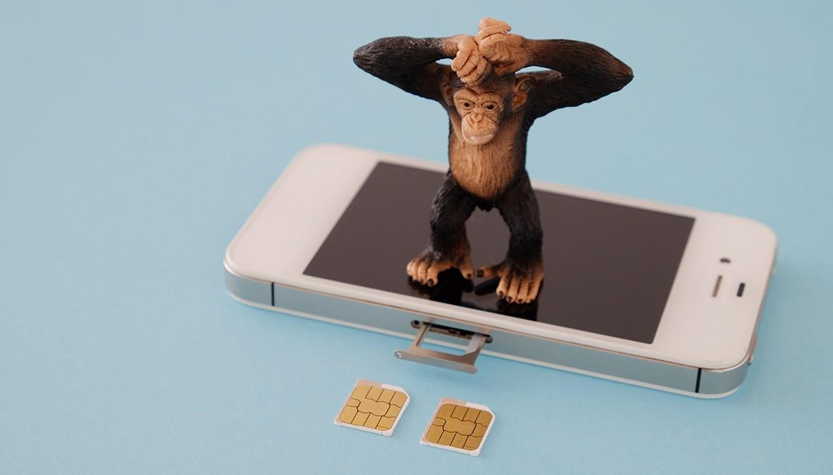 携帯番号を変えずに格安SIMフリーへ移行する方法